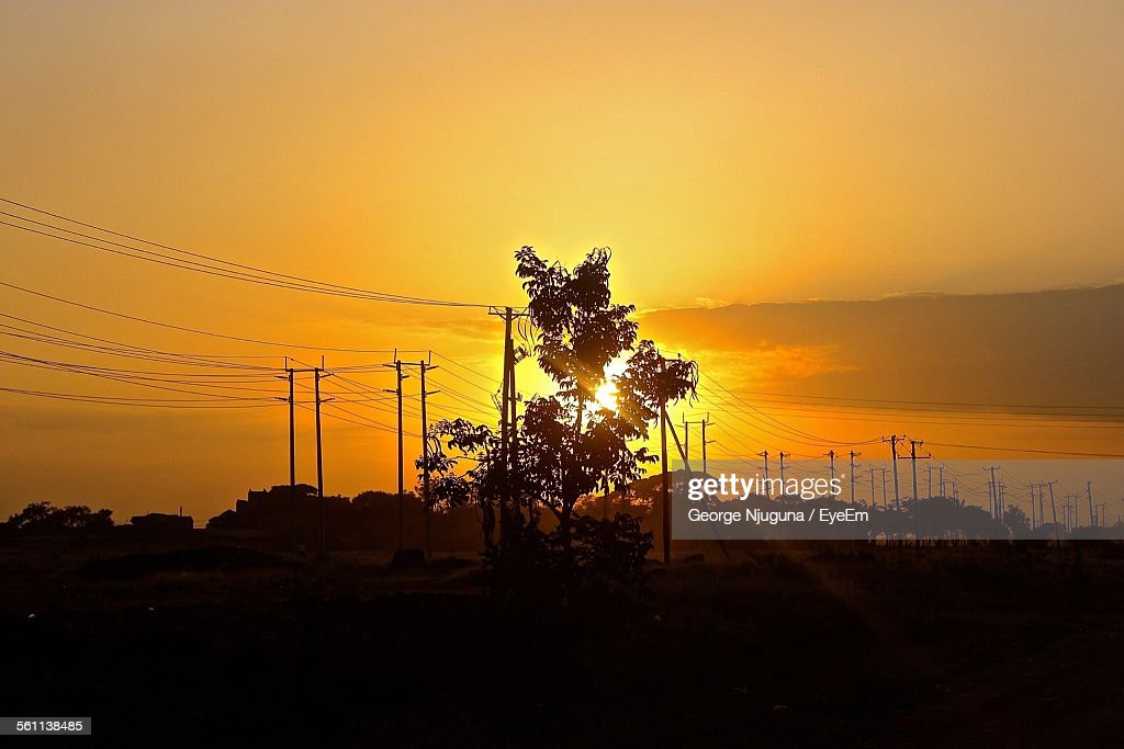 Silhouette Of Electricity Pylons And Trees