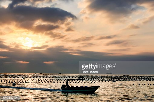 Silhouette of fisherman on boat : Stock Photo