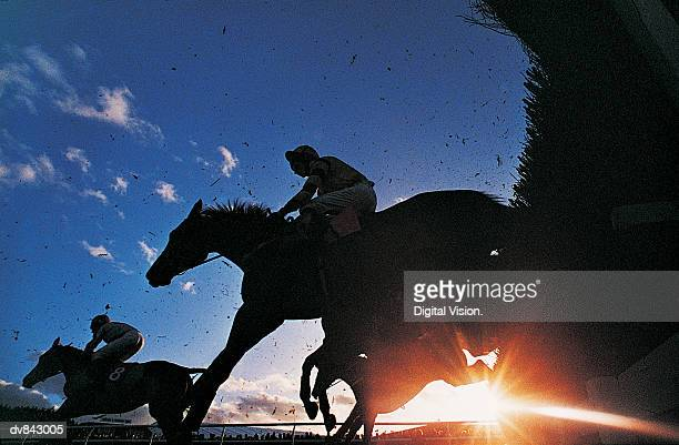 Silhouette of Horses Jumping a Steeplechase