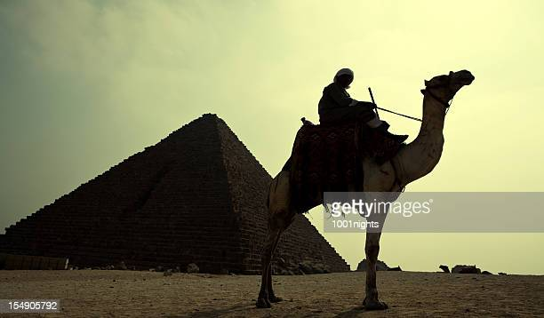 Silhouette of man on a camel