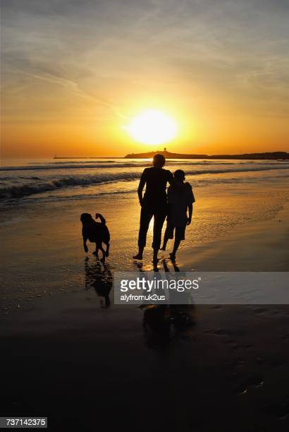 Silhouette of mother and son walking along the beach with their dog
