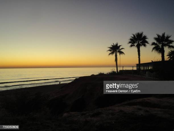 Silhouette Of Palm Trees On Beach Against Sky At Sunset