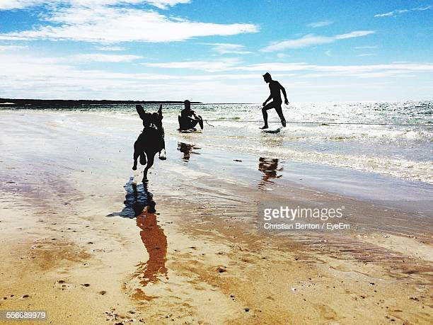 Silhouette Of People With Dog On Beach