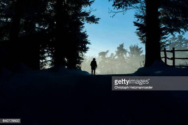 Silhouette of person in forest