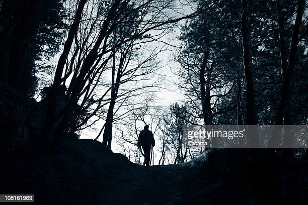 Silhouette of Person Walking Through the Woods