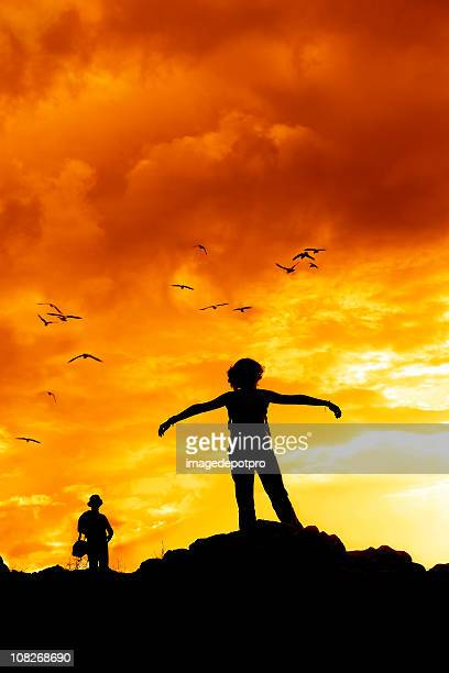 Silhouette of Person with Birds Flying