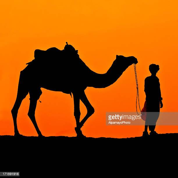 Silhouette of Rider and Camel in the Desert (Sunset) (IX)