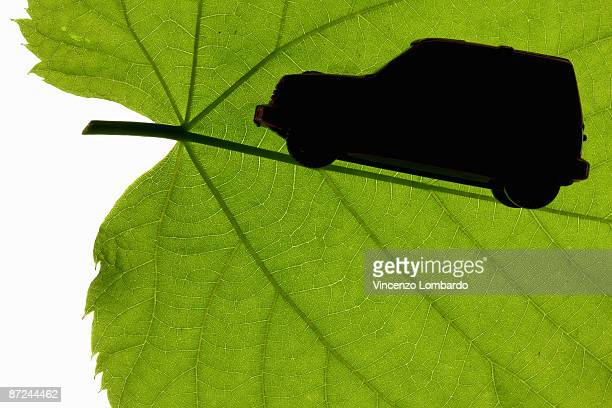 Silhouette of Toy Vehicle on Green leaf.