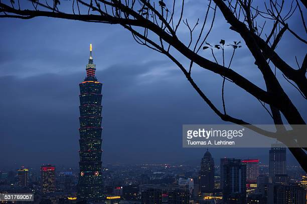 Silhouette of tree and view of lit Taipei at dusk