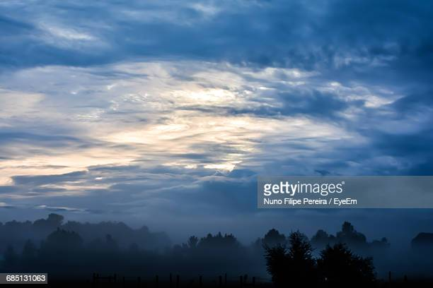 Silhouette Of Trees Against Cloudy Sky