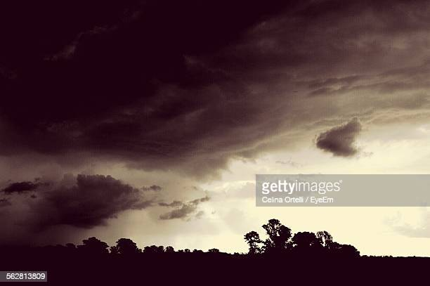 Silhouette Of Trees Against Storm Clouds