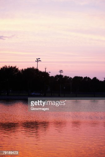 Silhouette of trees at dusk, Charleston, South Carolina, USA : Foto de stock