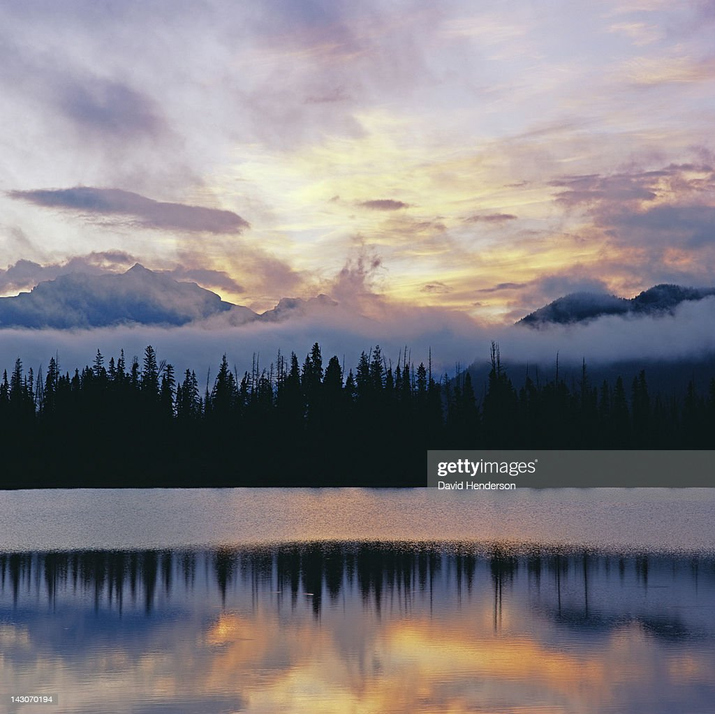 Silhouette of trees reflected in still lake : Stock Photo