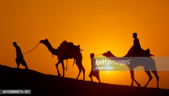 Silhouette Of Two Men Leading Camels Through Desert At ...