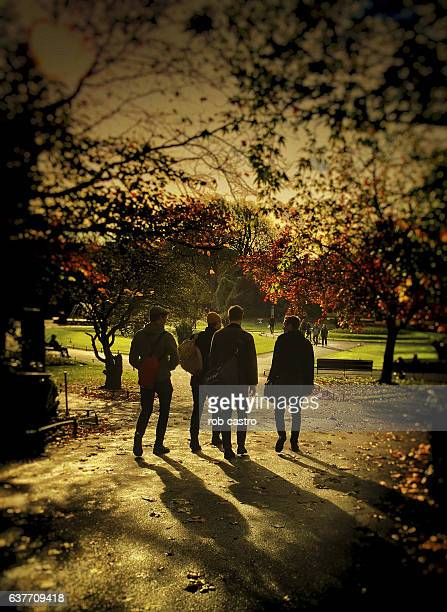 Silhouette of Young Men at St Stephen's Green