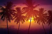 silhouette palm tree and sea at sunset summer nature background