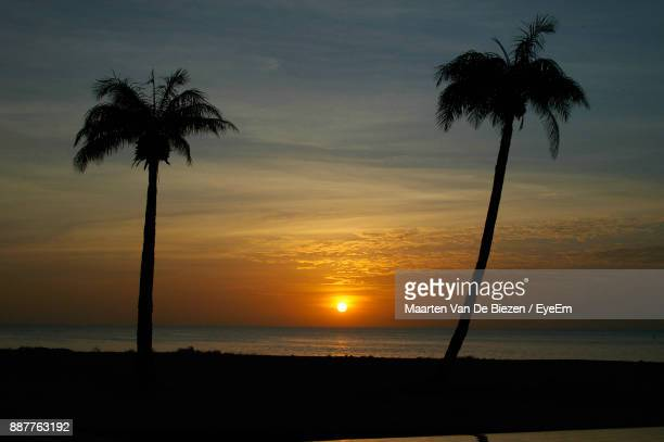 Silhouette Palm Tree On Beach Against Sky During Sunset