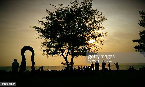 Silhouette Tree And People Against Sea During Sunset