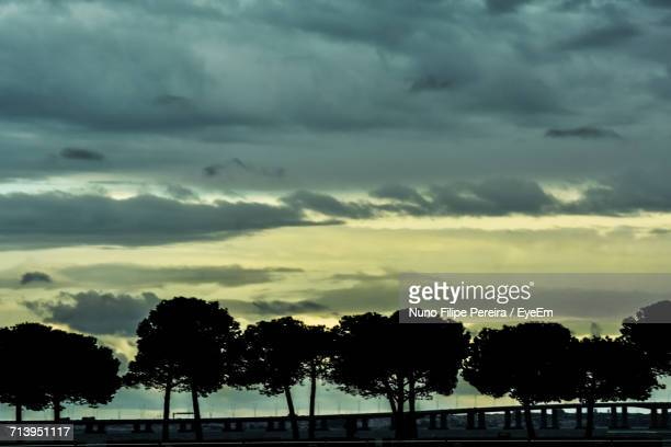 Silhouette Trees Against Dramatic Sky