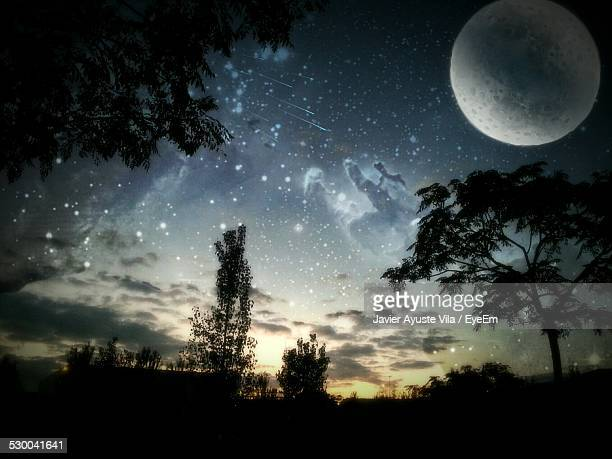 Silhouette Trees Against Star Field And Full Moon