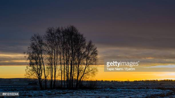 Silhouette Trees On Field Against Sky During Sunset