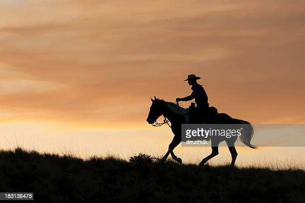 Silhouetted Cowboy rides before golden sunset