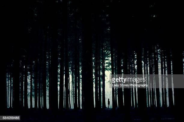 Silhouetted figure in forest with moonlight