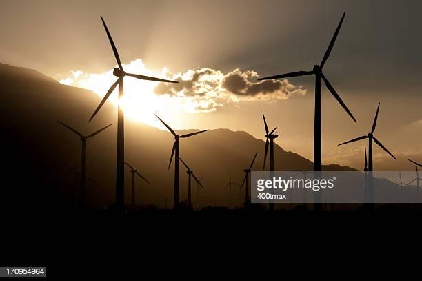 Silhouetted Wind Turbine Farm