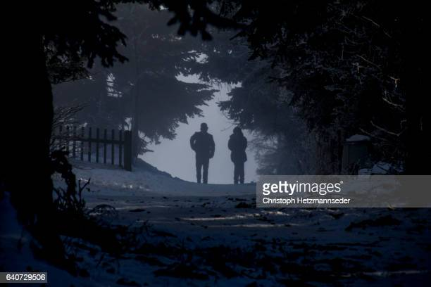 Silhouettes in forest