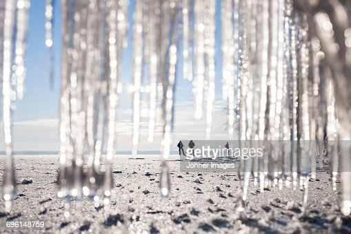 Silhouettes of people on beach. icicles on foreground