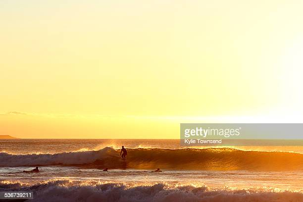Silhouettes of surfers at the beach at sunset