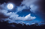 Silhouettes of tree and nighttime sky with clouds, bright full moon would make a great background. Beauty of nature. The moon were NOT furnished by NASA.