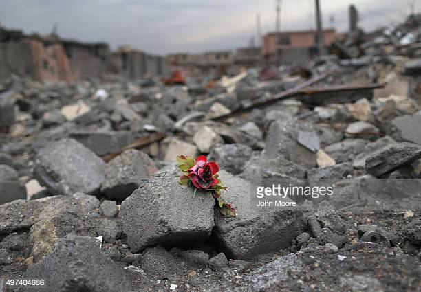 A silk rose lay in the rubble of an airstrike on November 16 2015 in Sinjar Iraq Kurdish forces with the aid of months of USled coalition airstrikes...