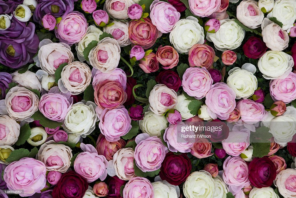 Silk roses on display for Valentines Day at 1881 Heritage shopping centre, Tsim Sha Tsui. : Stock Photo