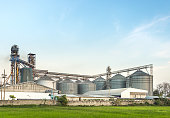 silo in food industry, argiculture, behind rice field with clear sky