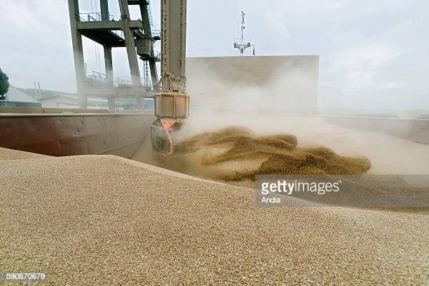 Silos of the 'SENALIA' cooperative in Rouen Loading of wheat onto a cargo boat in the port