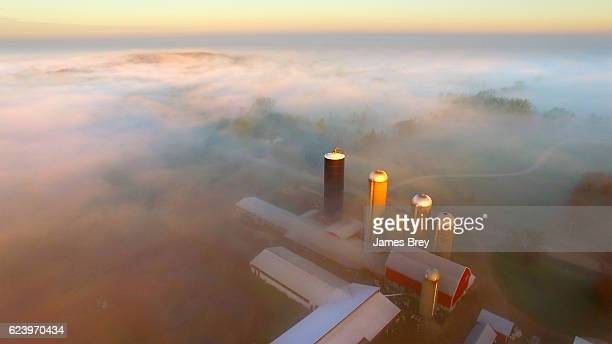 Silos rise above foggy rural landscape, to find the sun