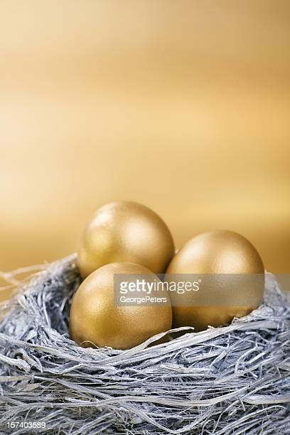 Silver and Gold Nest Egg