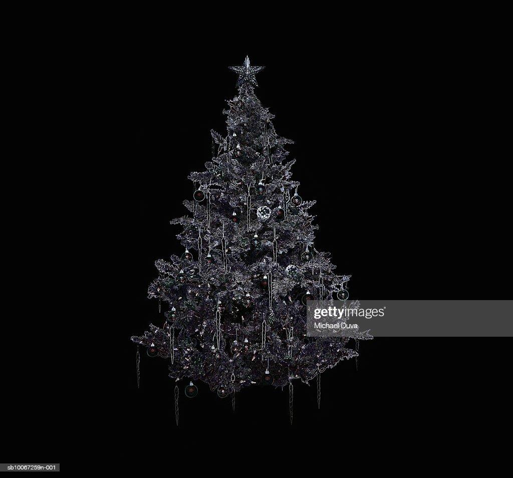 Silver Christmas tree on black background : Stock Photo