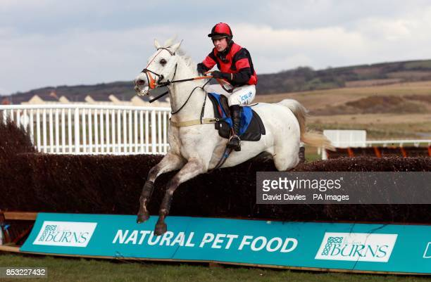 Silver Token ridden by Tom David jumps the last on their way to victory in the Llewellyn Humphreys Novicesacute Huntersacute Chase at Ffos Las...