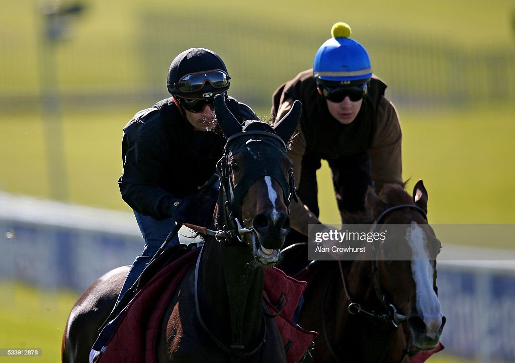 Silvestre De Sousa riding Harlequeen (L) have a racecourse gallop during the 'Breakfast with the Stars' morning at Epsom Racecourse on May 24, 2016 in Epsom, England.