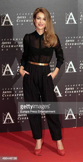 Silvia Abascal attends the Golden Medal 2015 ceremony on November 2 2015 in Madrid Spain