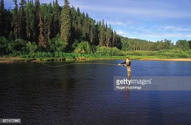Simeon Hay flyfishing for Atlantic Salmon with a double handed rod on The Talachulitna River in Alaska
