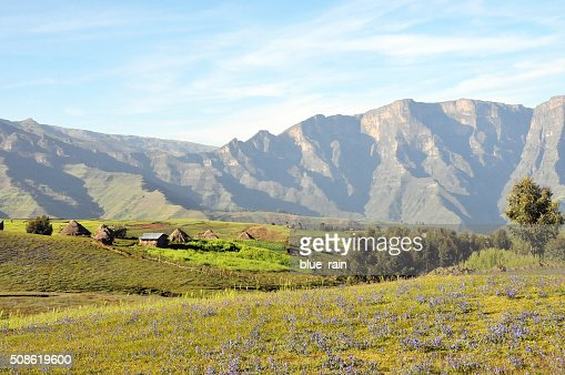 Simien mountains park : Stock Photo
