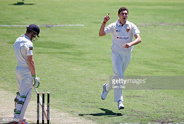 Simon Milenko of the Tigers celebrates taking the wicket of Cameron Bancroft of the Warriors during day one of the Sheffield Shield match between...
