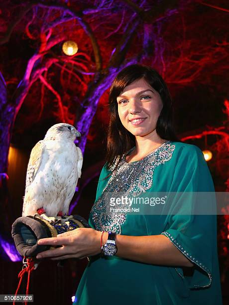 Simona Halep of Romania holds a falcon at the players party during day two of the WTA Dubai Duty Free Tennis Championship at the Dubai Duty Free...