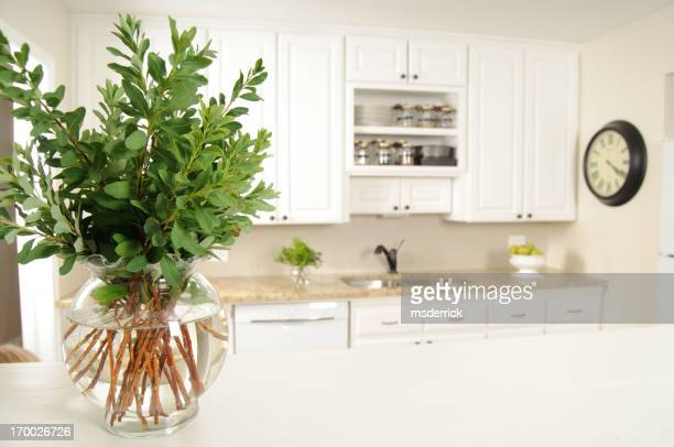 シンプルなキッチンと植物