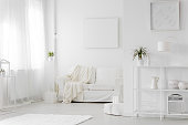 Copy space on white poster above sofa with blanket in simple living room interior with plant