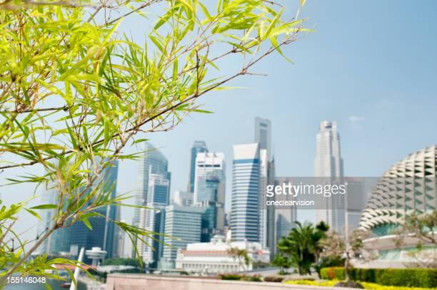 シンガポール CBD 、バンブー