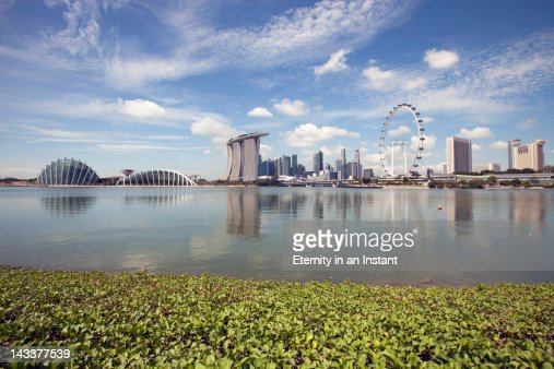 Singapore Cityscape with Singapore Flyer : Stock Photo
